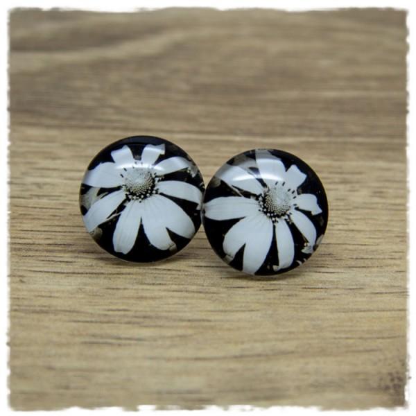 1 Paar Ohrstecker mit weißer Blüte auf schwarzem Hintergrund